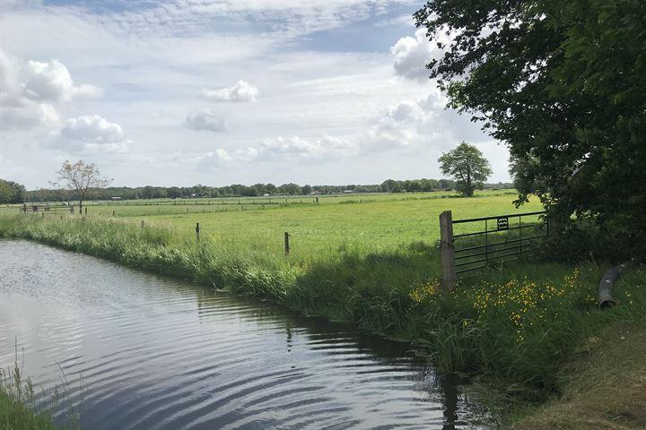 Huisdijk