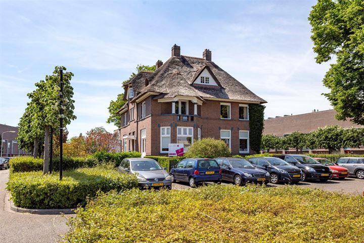 Flavus 1, Nijmegen