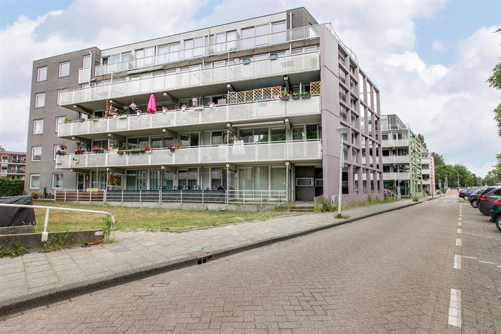 Buiksloterweg 185