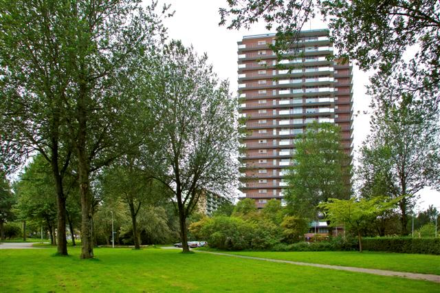 Bekijk foto 3 van Dunantstraat 1289