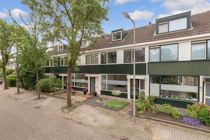 Couwenhoven 4206