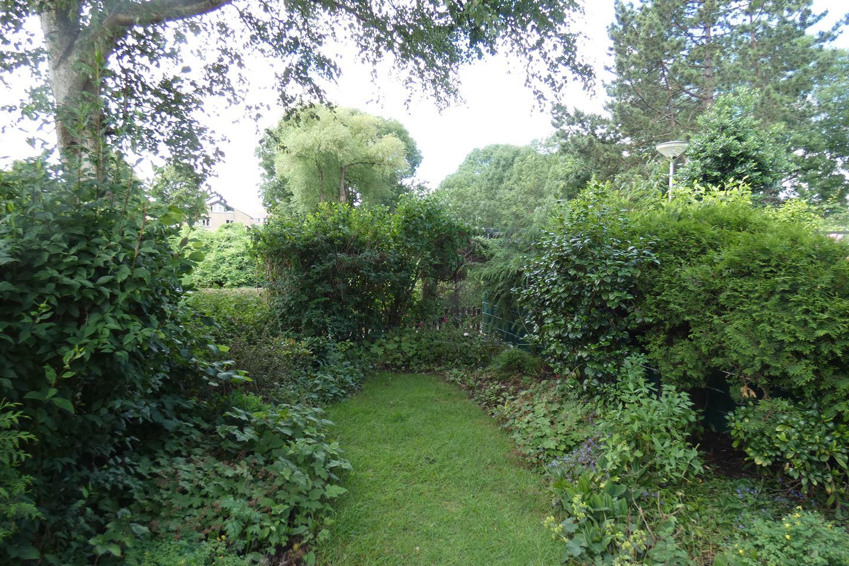 Bekijk foto 3 van Kikkerveen 262