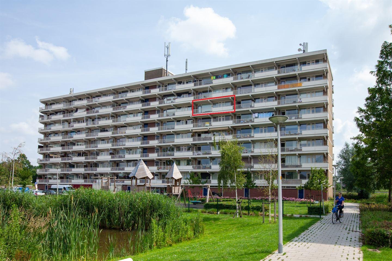 Bekijk foto 1 van Peppelhorst 43