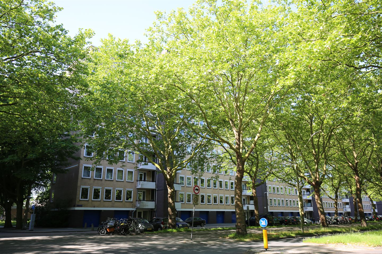 Bekijk foto 3 van Van Nijenrodeweg 697