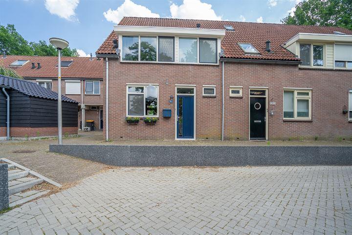 Hoogkamp 100