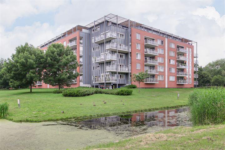 Stadspark 17
