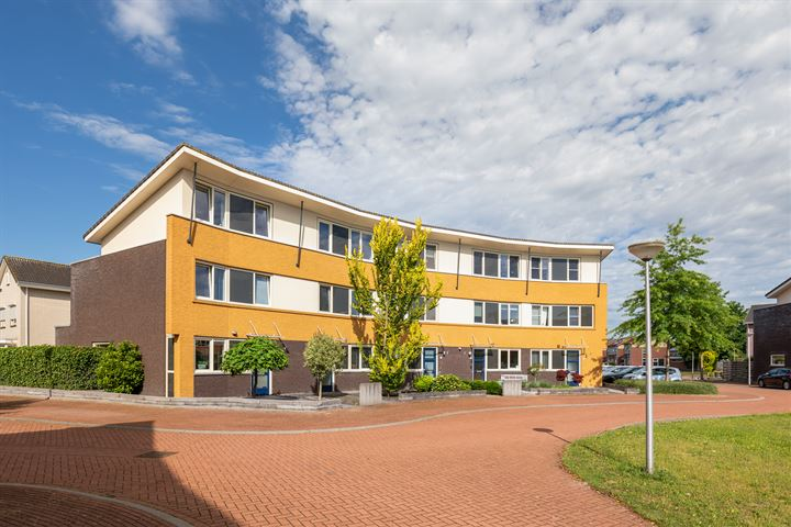 Rutenberg 1