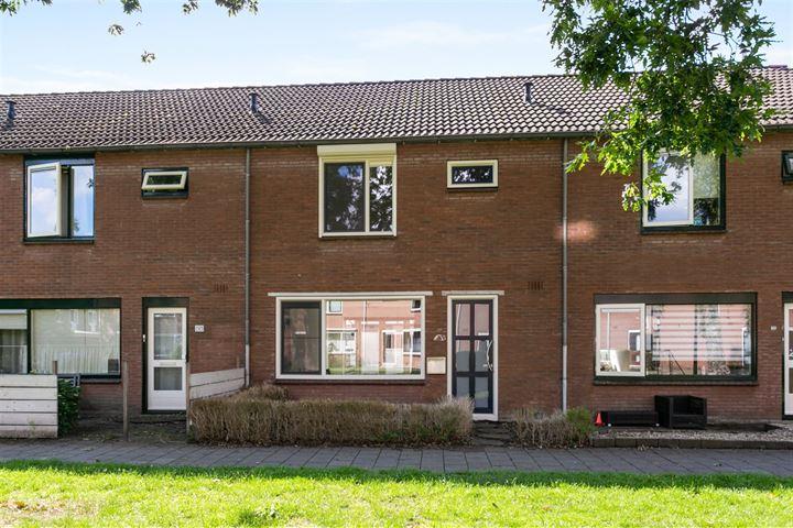 Kruizemuntstraat 785