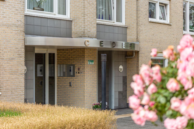 Bekijk foto 5 van Kleine Houtstraat 15