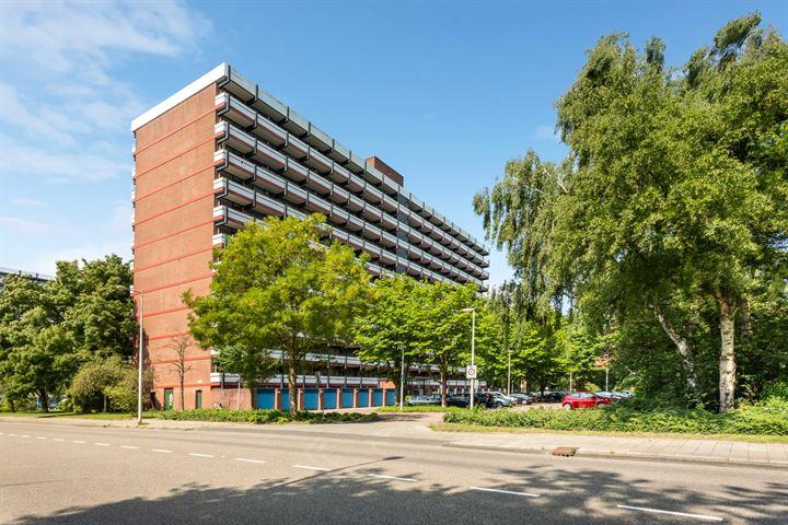 H. Cleyndertweg 485