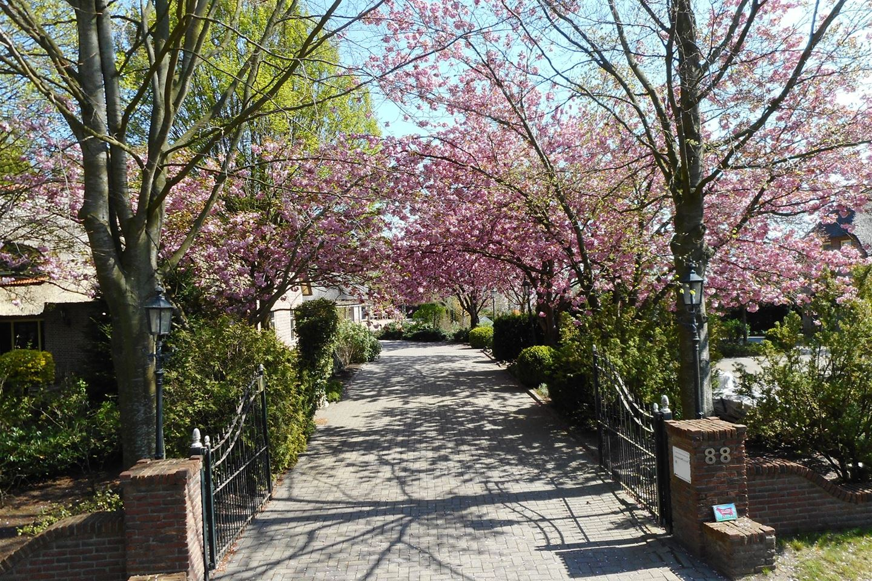 Bekijk foto 3 van Wedderstraat 88