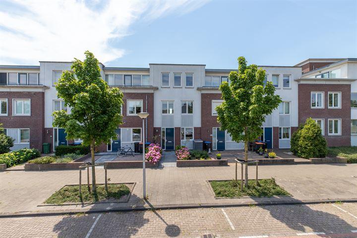 Ridderhof 6