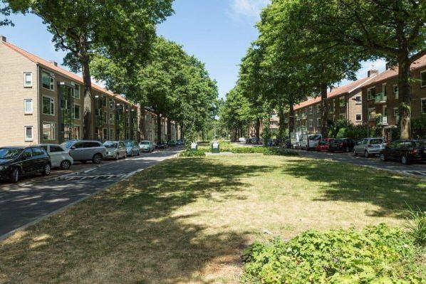 View photo 1 of Jacob van Campenlaan 213