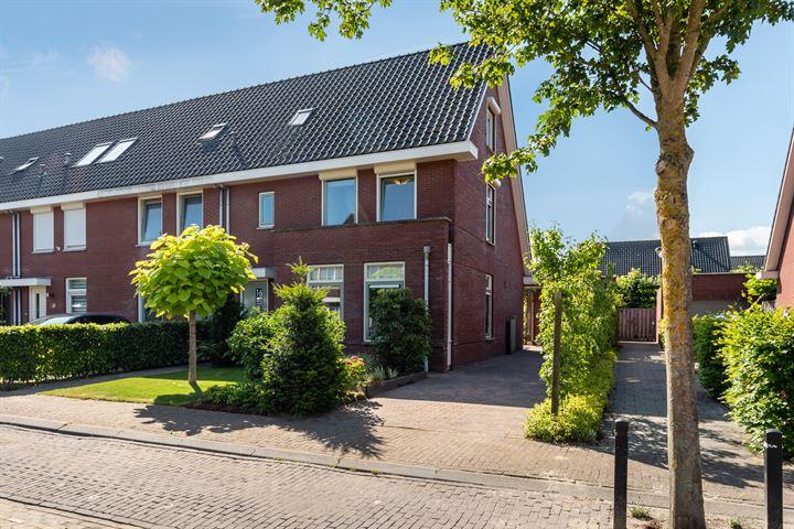 Marjoleinstraat 16
