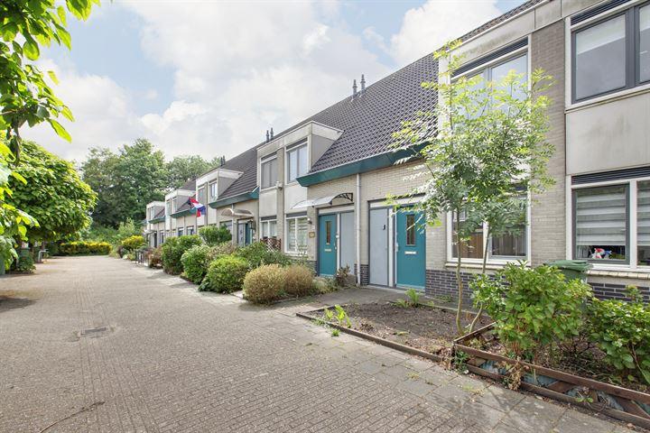 P. Lieftinckstraat 43
