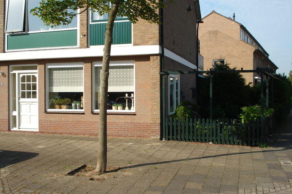 Bekijk foto 1 van Nicolaas van der Steenstraat 38