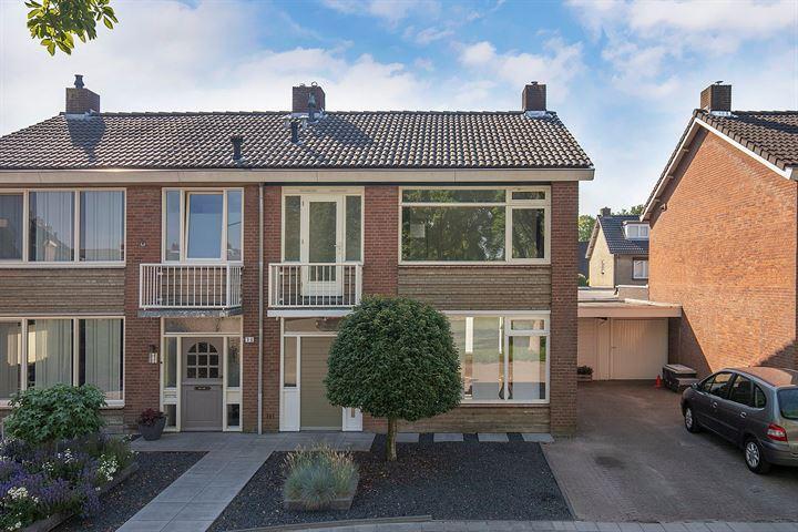 Hoolhof 36