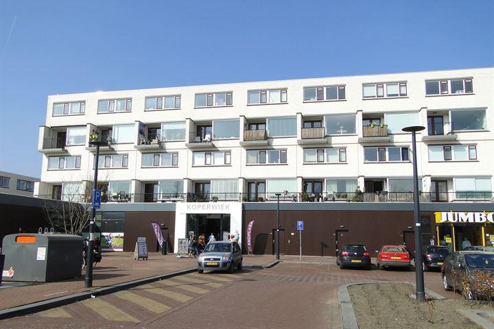Reigerlaan 215 t/m 249, e.a. - Appartementen