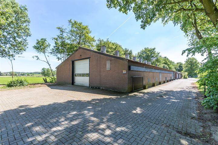 Olyhorststraat 40