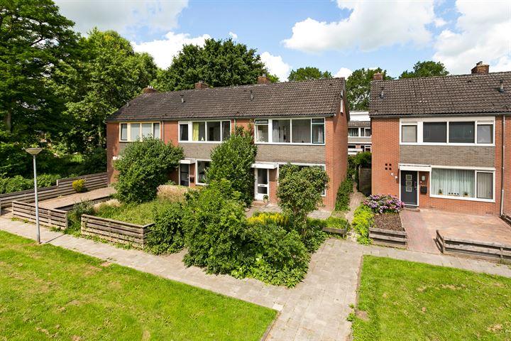 Schelfhoutstraat 31