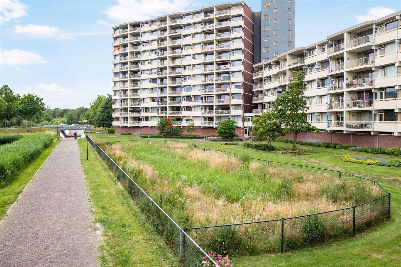 View photo 2 of Zuiderkruis 176
