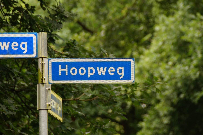 Bekijk foto 3 van Hoopweg 36 B