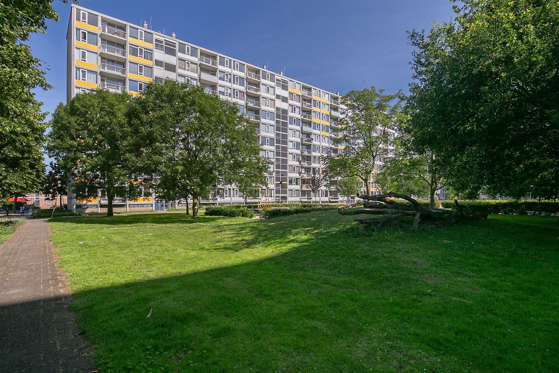 Bekijk foto 1 van Dommeringdreef 143