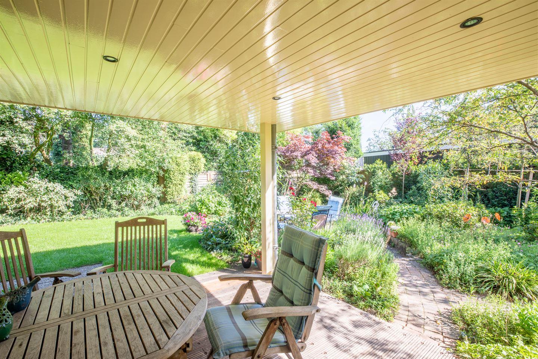 Bekijk foto 2 van Hugo de Vriespark 11