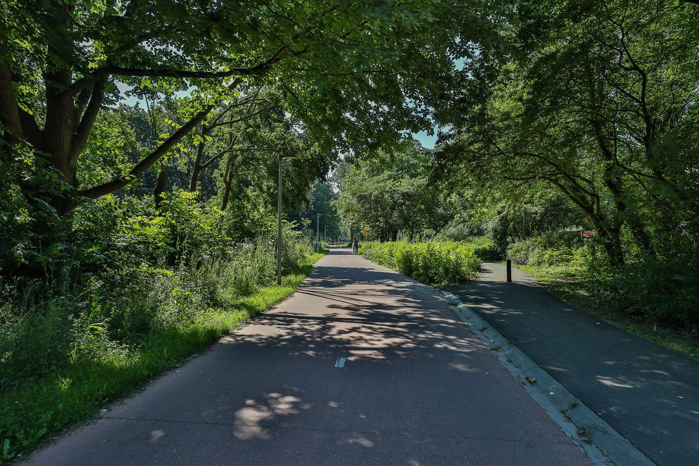 Bekijk foto 3 van Duindoornstraat 83