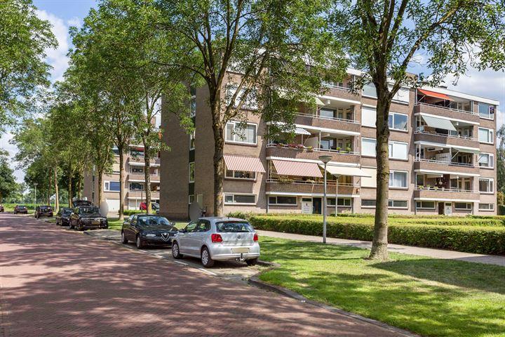 J.J. van Deinselaan 384