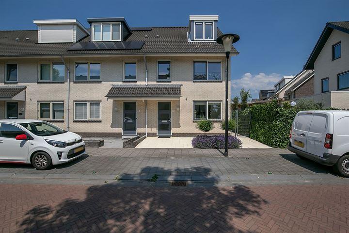 Sandelhout 10