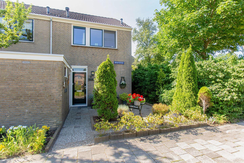 Bekijk foto 4 van Brasemermeer 1
