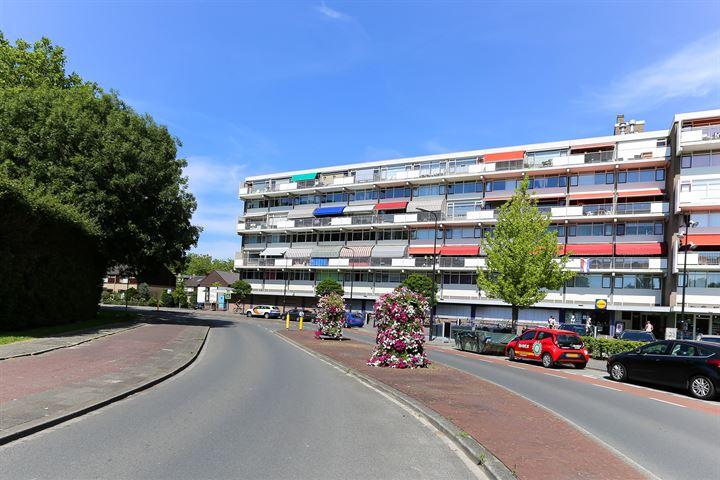 Dr H.J. van Mooklaan 169