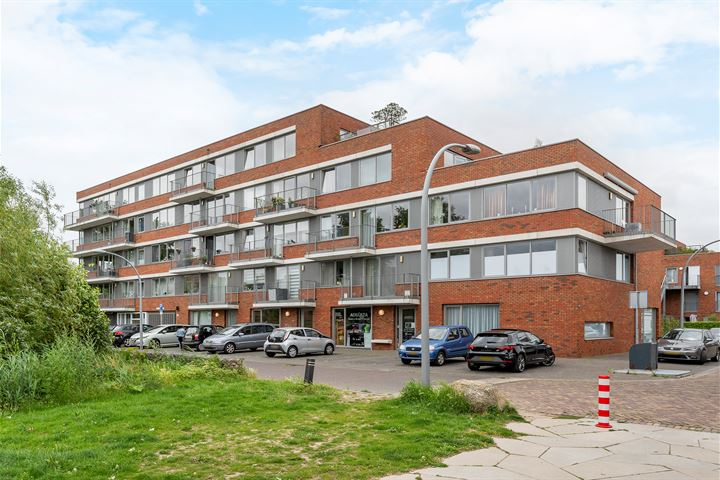 Johan de Wittstraat 31