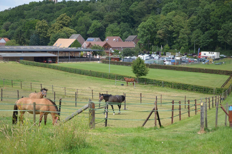 Bekijk foto 4 van Rimburgerweg 176