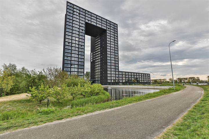 Regattaweg 460, Groningen