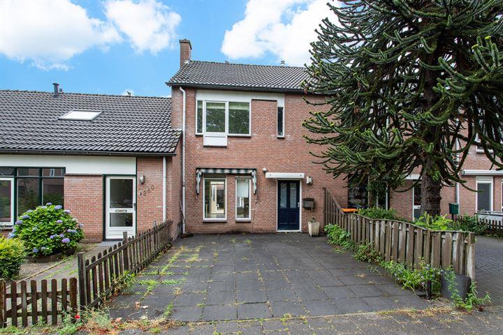 Dinant Dijkhuisstraat 278