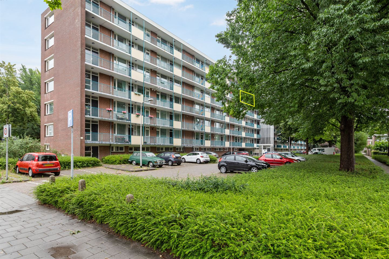 Bekijk foto 1 van Professor Cobbenhagenlaan 558