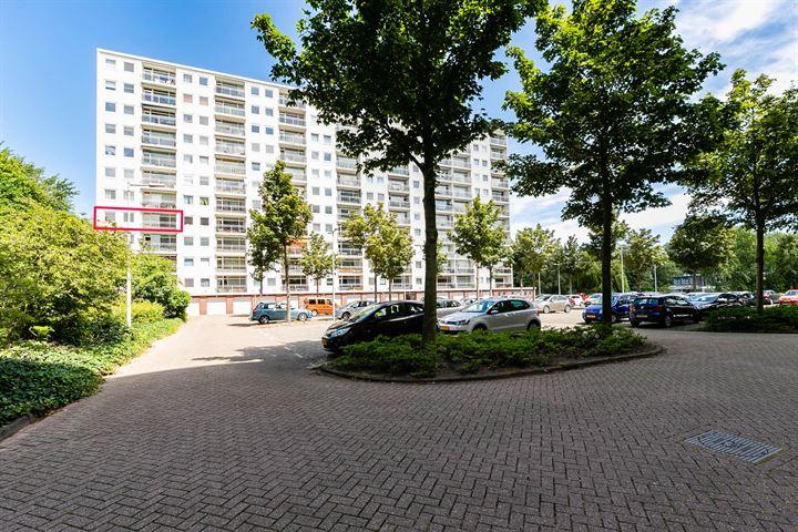 Jisperveldstraat 555