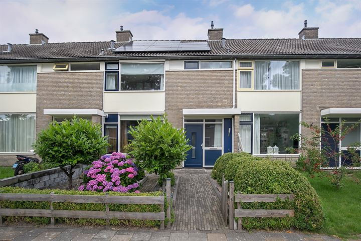 Moezelstraat 44