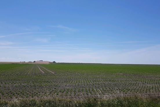 Bekijk foto 2 van aan de Groeneweg
