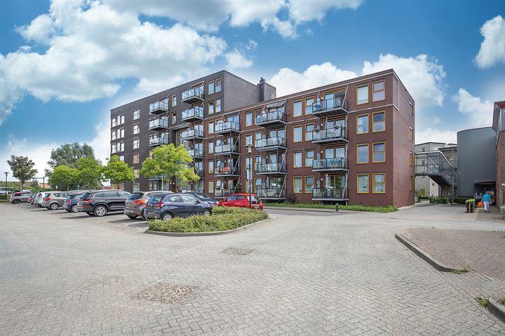 Ravelijn 356