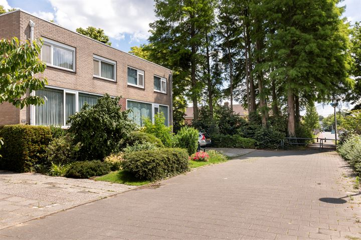 Meijhorst 9221