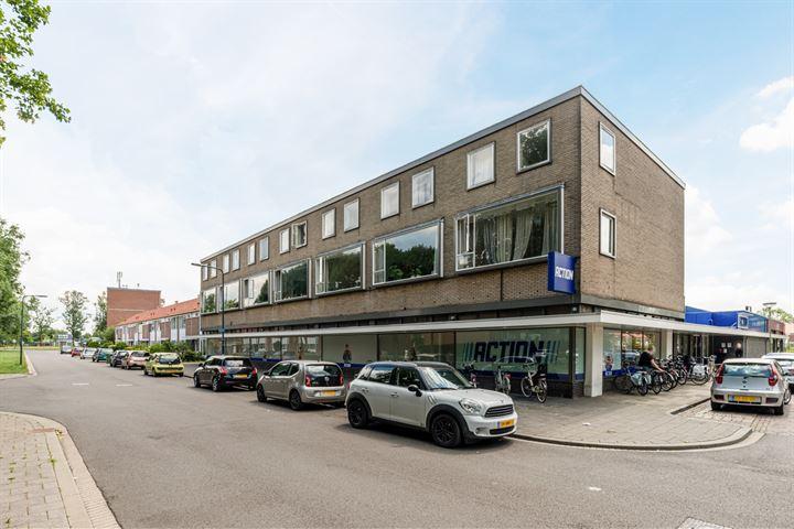 Rijnauwenstraat 100 A