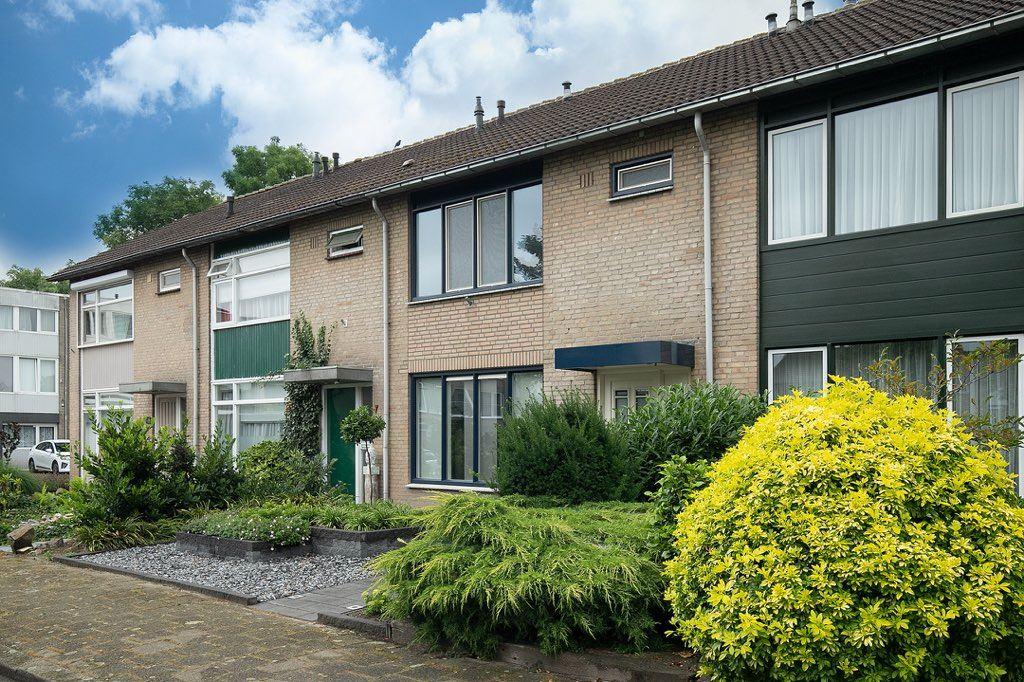 Bekijk foto 3 van Rubensplein 6