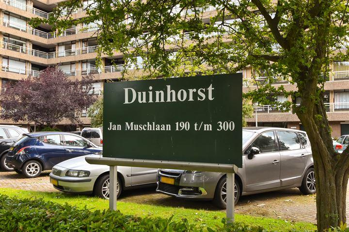 Jan Muschlaan 258