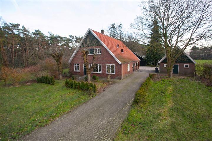 Mekkelhorsterstraat 38