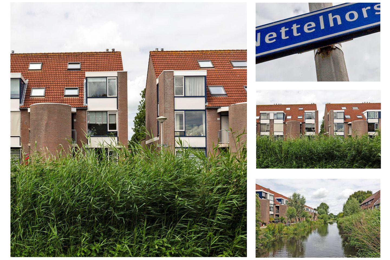 Bekijk foto 4 van Nettelhorst 50