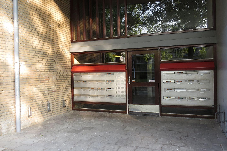 Bekijk foto 3 van Kamphuizenlaan 61