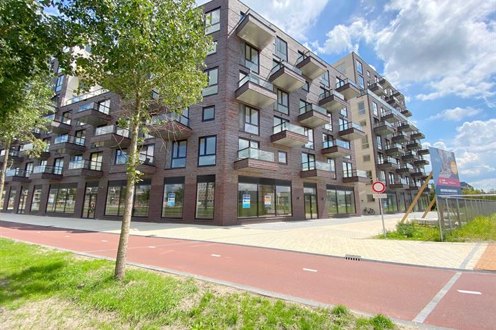 Irene boulevard, Delft